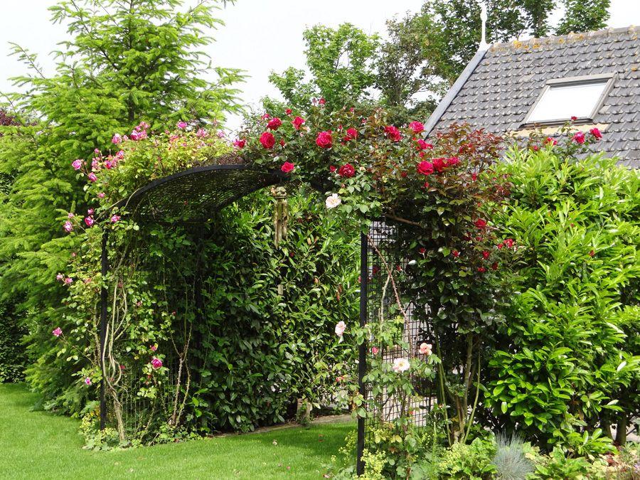 Tuin klanktuin88 tuin en klankschalen zeeland - Pergola verkoop ...